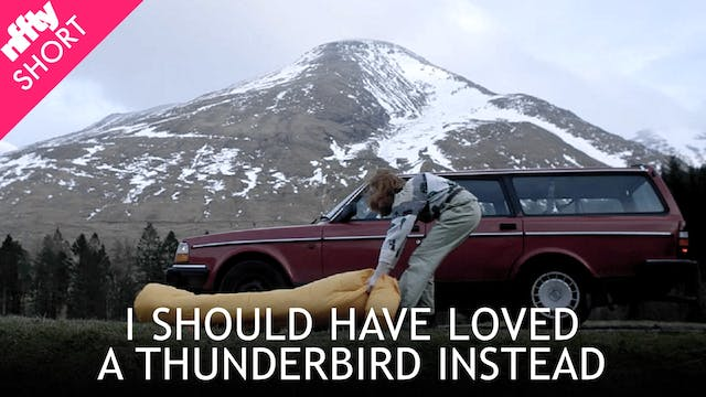 I Should Have Loved a Thunderbird Ins...