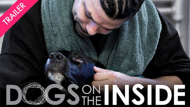 Dogs on the Inside - Coming 8/21
