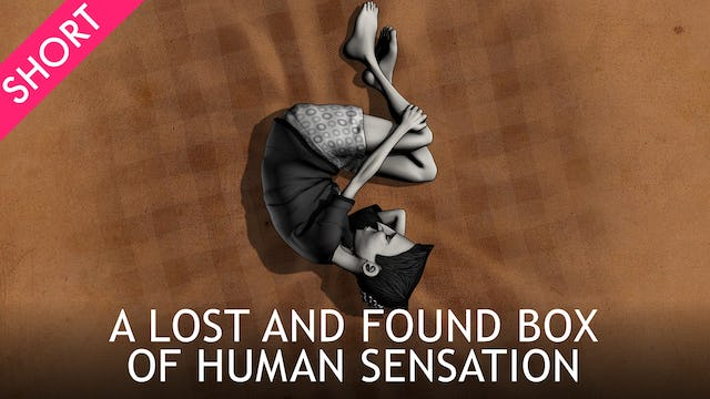 A Lost and Found Box of Human Sensation