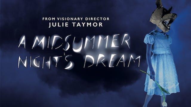 A MIDSUMMER NIGHT'S DREAM (Julie Taymor, director)