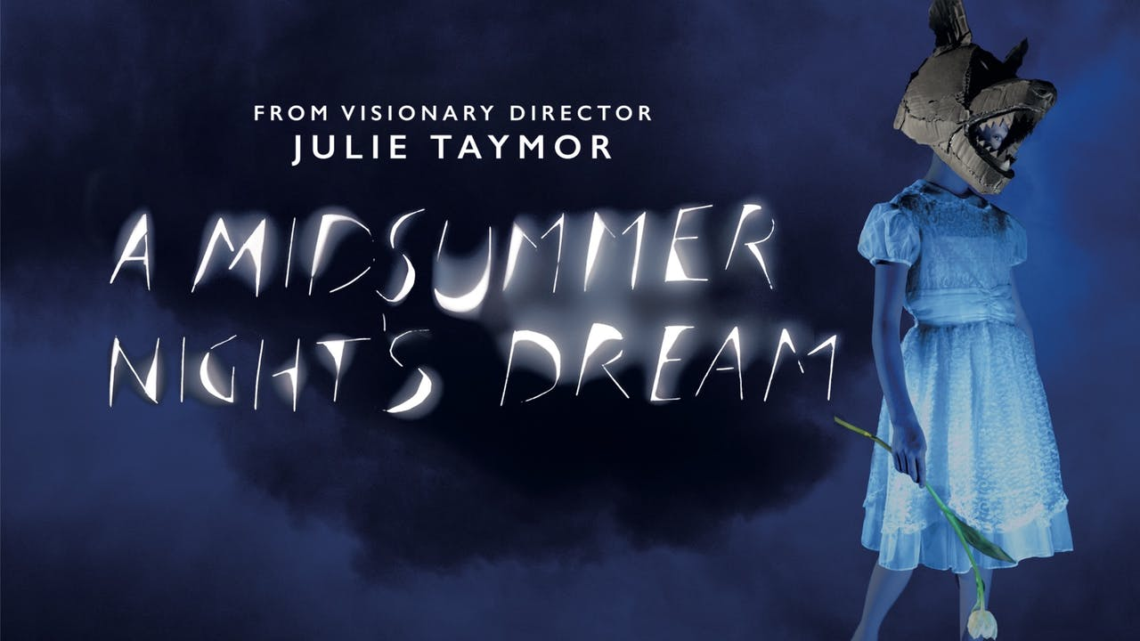 A MIDSUMMER NIGHT'S DREAM (Julie Taymor, director)