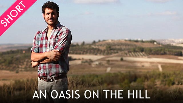 An Oasis on the Hill