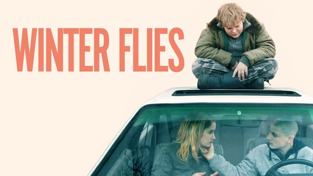 Winter Flies