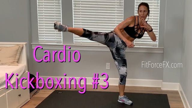 Cardio Kickboxing No.3