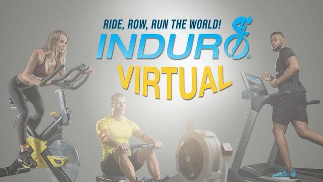 Induro Virtual