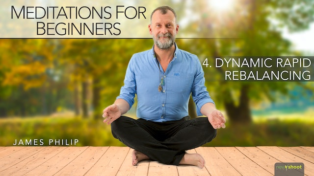 Meditations for Beginners: Rapid Rebalancing