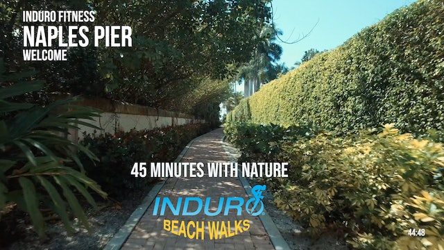 Induro Beach Walking with Nature: Naples Pier, Florida - 45 Minute Walk