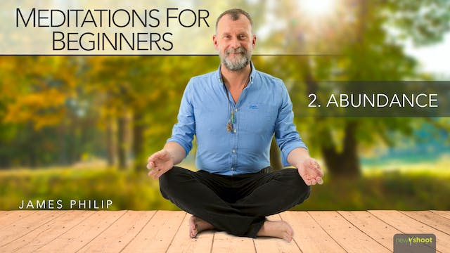 Meditations for Beginners: Abundance