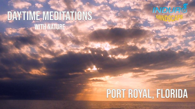 Induro Mindscape with the Sounds of Nature: Port Royal, Florida Day Set