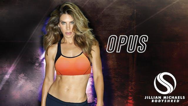 Opus Bonus