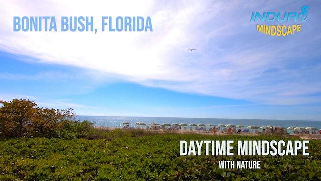 Induro Mindscape with the Sounds of Nature: Bonita Bush Day Set, Florida