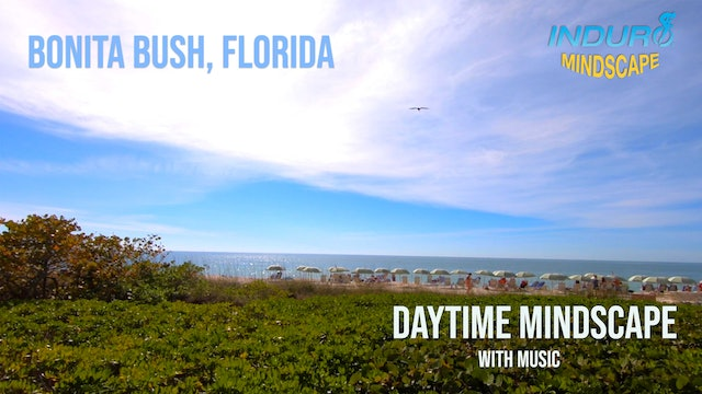 Induro Mindscape with Music: Bonita Bush Day Set, Florida