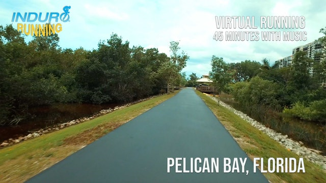 Induro Running: Pelican Bay, Florida - 45 Minute Run