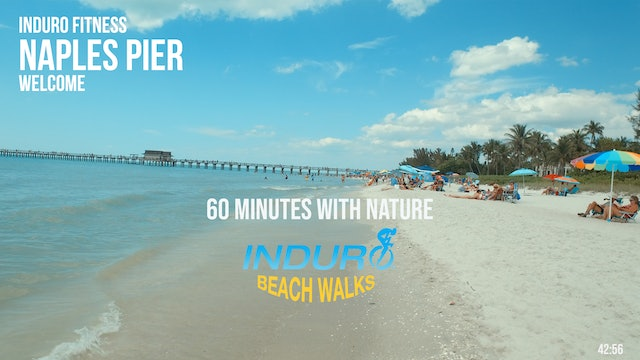 Induro Beach Walking with Nature: Naples Pier, Florida - 60 Minute Walk