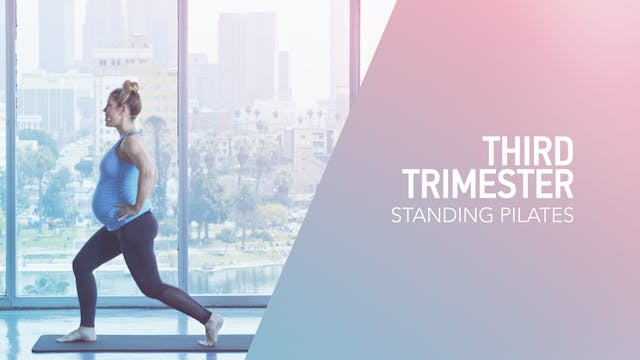 3RD TRI // 2 / Standing Pilates