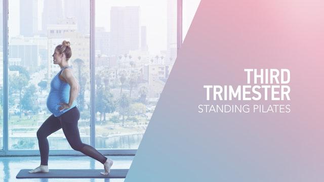 3RD TRI // 2 / Standing Pilates
