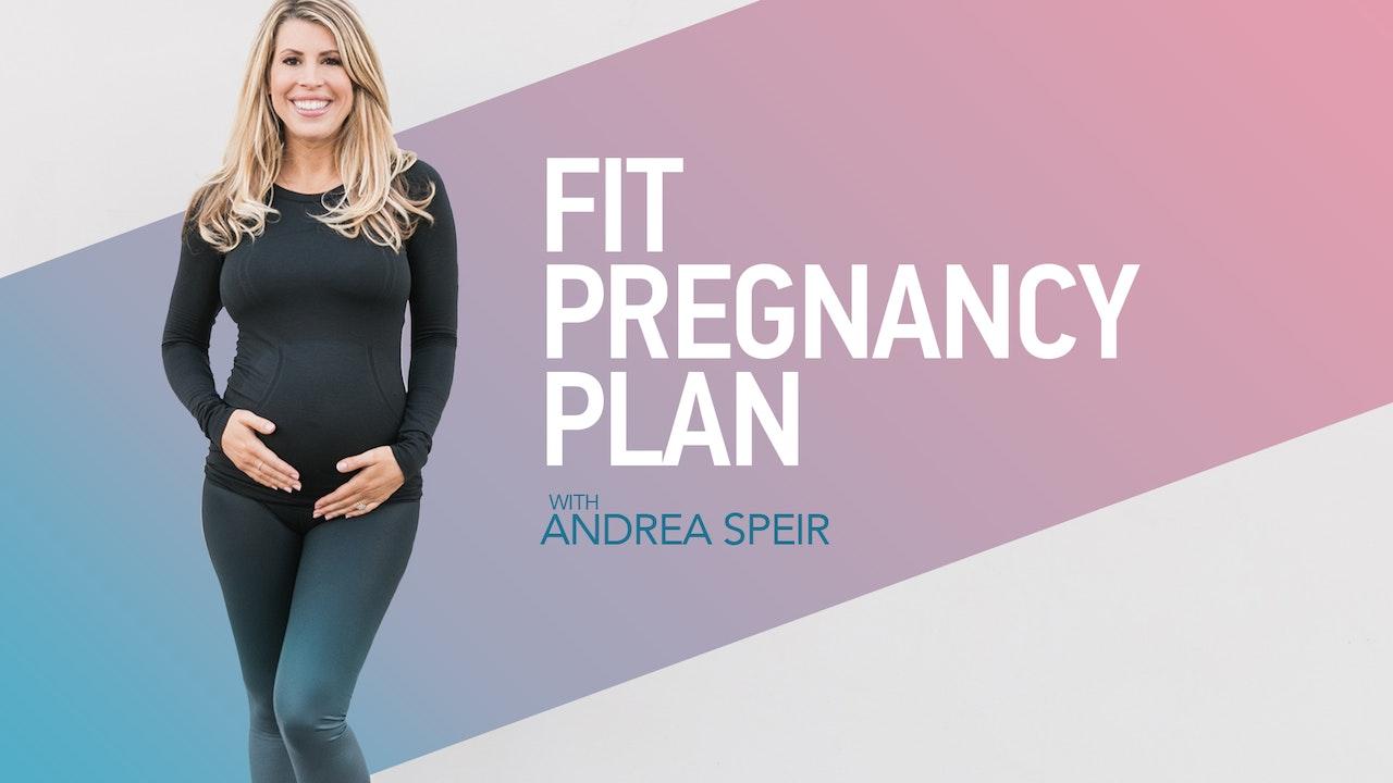 FIT PREGNANCY PLAN
