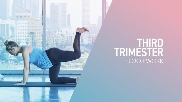 3RD TRI // 3 / Floor Work
