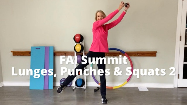 FAI Summit: Lunges and Punches and Squats, OH MY!  Part 2