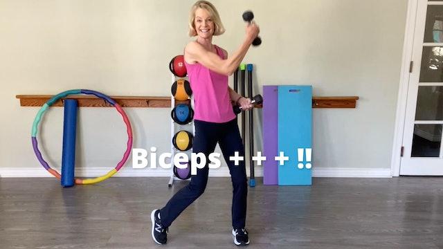 Biceps + + + !