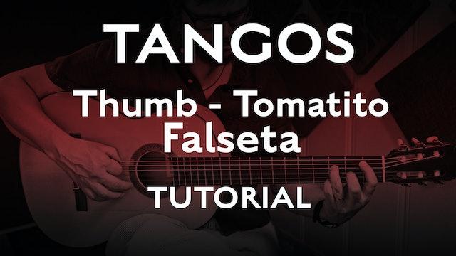 Tangos Explained - Thumb Tomatito Falseta - Tutorial