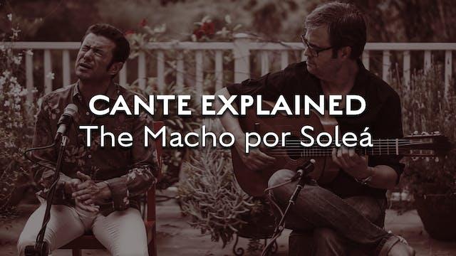 Cante Explained - Soleá - The Macho