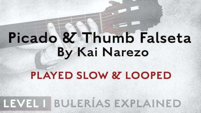 Bulerias Explained - Level 1 - Picado & Thumb Falseta by Kai Narezo - SLOW/LOOP