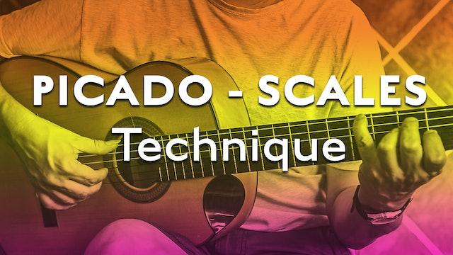Technique Bootcamp - Picado/Scales Technique