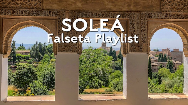 Solea Falseta Playlist