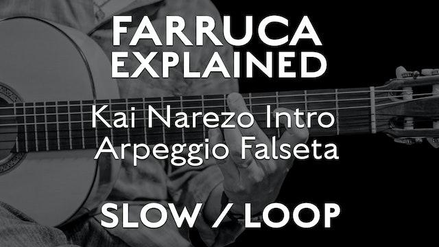 Farruca Explained - Kai Narezo Intro Arpeggio Falseta - SLOW / LOOP