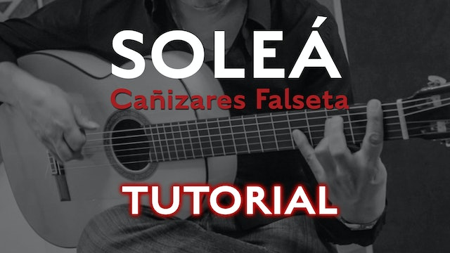 Friday Falseta - Cañizares Solea Falseta - Tutorial