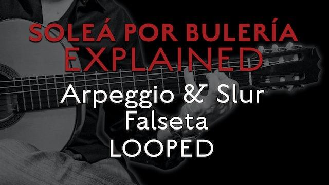 Solea Por Bulerias Explained - Arpeggio and Slur Falseta - LOOPED