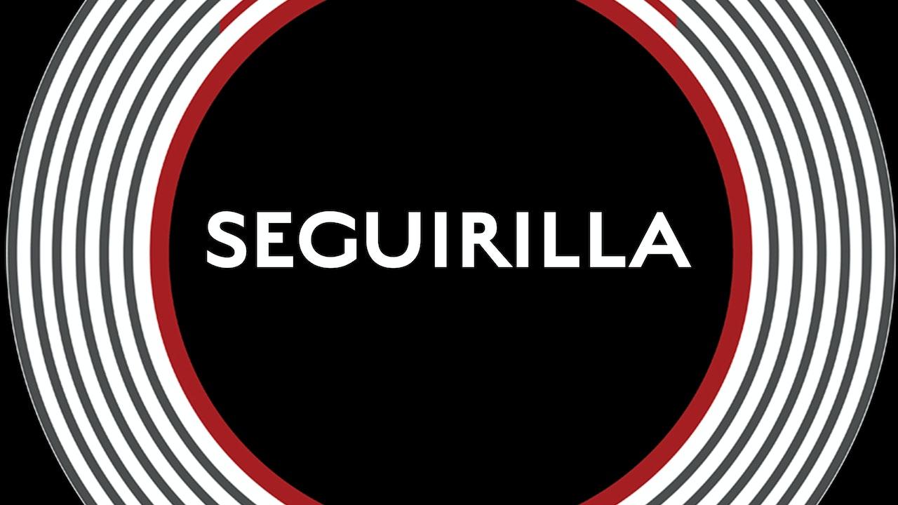 SEGUIRILLA Playlist