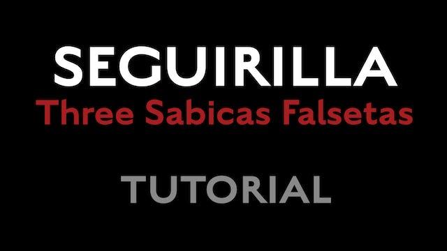 Friday Falseta - Seguirilla - Three Sabicas Falsetas Tutorial