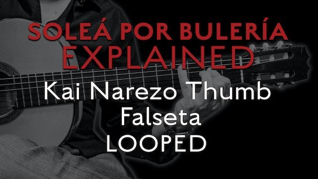 Solea Por Bulerias Explained - Kai Narezo Thumb Falseta - LOOPED
