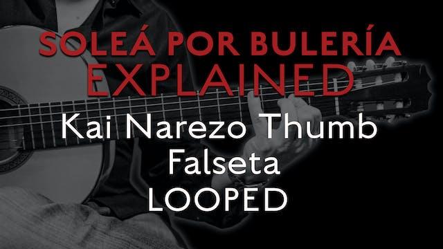 Solea Por Bulerias Explained - Kai Na...