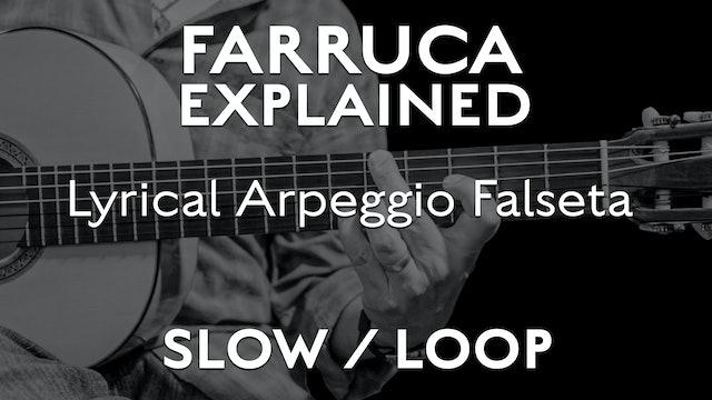 Farruca Explained - Lyrical Arpeggio Falseta - SLOW / LOOP