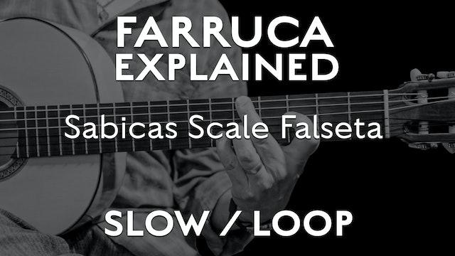 Farruca Explained - Sabicas Scale Falseta - SLOW / LOOP