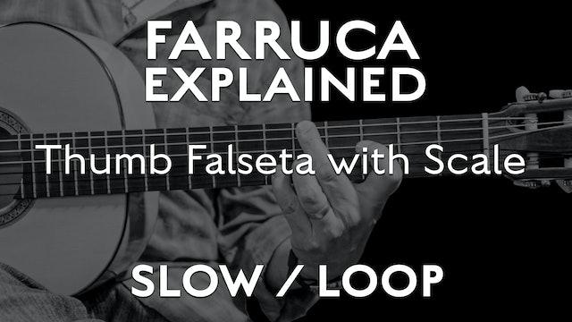Farruca Explained - Thumb Falseta with Scale - SLOW / LOOP