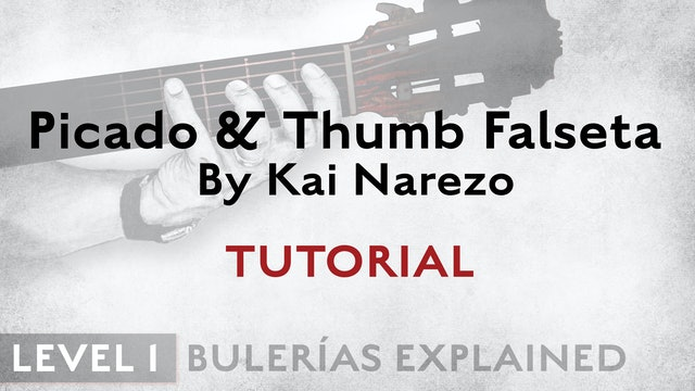 Bulerias Explained - Level 1 - Picado & Thumb Falseta by Kai Narezo - TUTORIAL