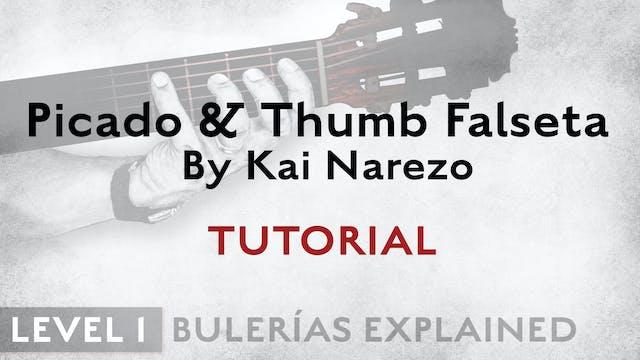 Bulerias Explained - Level 1 - Picado...