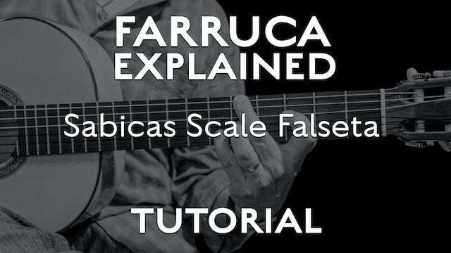 Farruca Explained - Sabicas Scale Falseta - TUTORIAL
