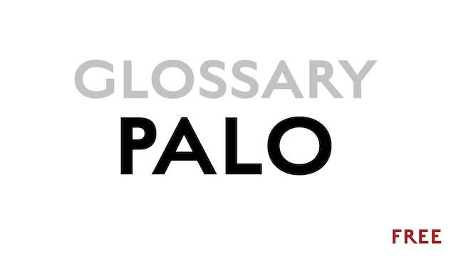 Palo - Glossary Term