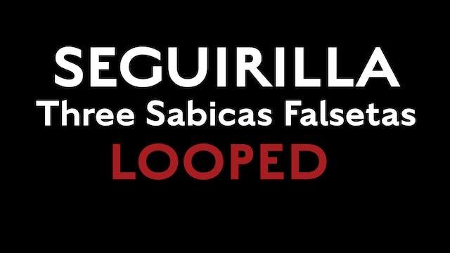 Friday Falseta - Seguirilla - Three Sabicas Falsetas LOOPED