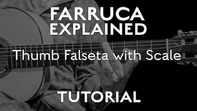 Farruca Explained - Thumb Falseta with Scale - TUTORIAL