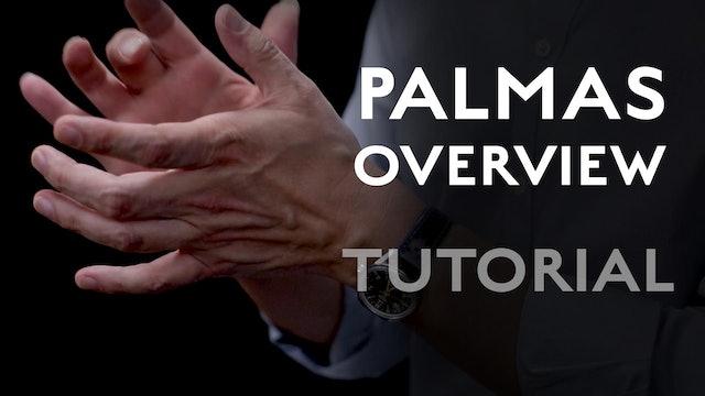 Palmas - Overview