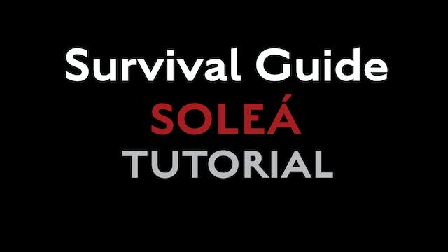 Survival Guide - Solea for accompanyi...