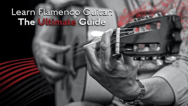 Learn Flamenco Guitar: The Ultimate Guide