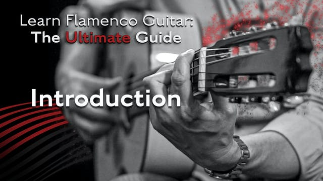 Learn Flamenco Guitar: The Ultimate G...