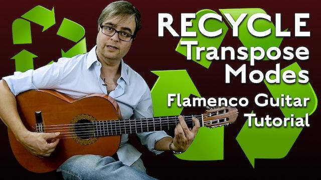 Solea Por Buleria and Alegrias - Recycling - Transpose Modes - TUTORIAL